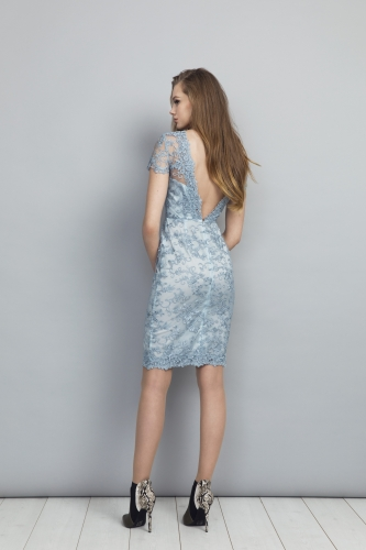 Chloe Dress back view