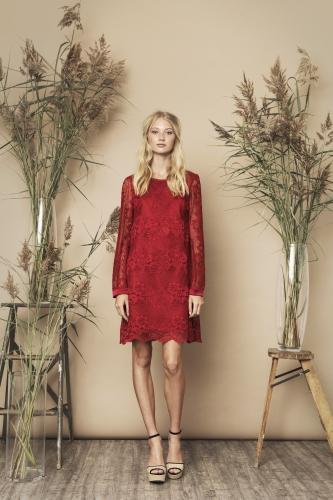 Sasha Dress Red